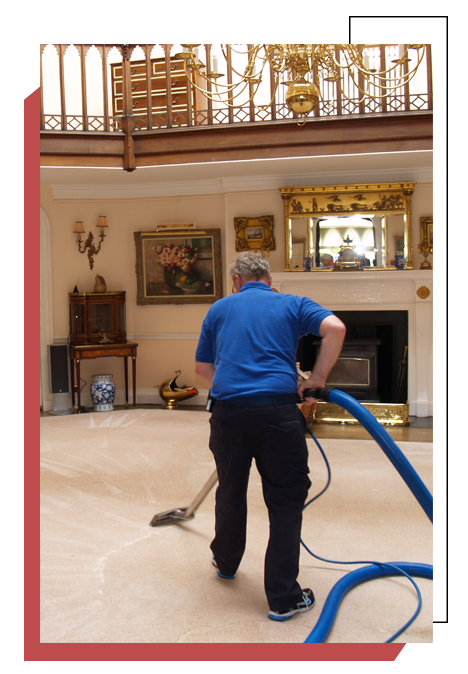 Need Carpet Cleaning Los Angeles Carpet Cleaning